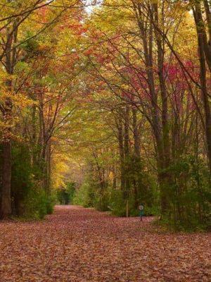 Goderich-trails
